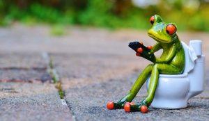 grenouille-sur-des-toilettes