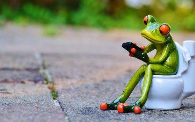 L'Écologie jusque dans vos toilettes.
